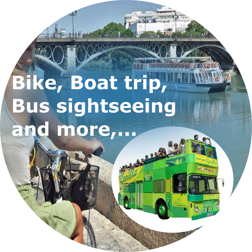 Bus, boat and more Seville experiences